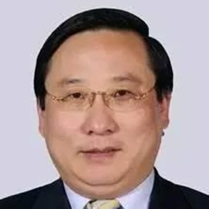 Victor Zhikai Gao (Chairman / Vice Chairman at China Energy Security Institute / Sino-Europe United Investment Corporation)